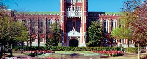 ¿Vale la pena ir a la Universidad?