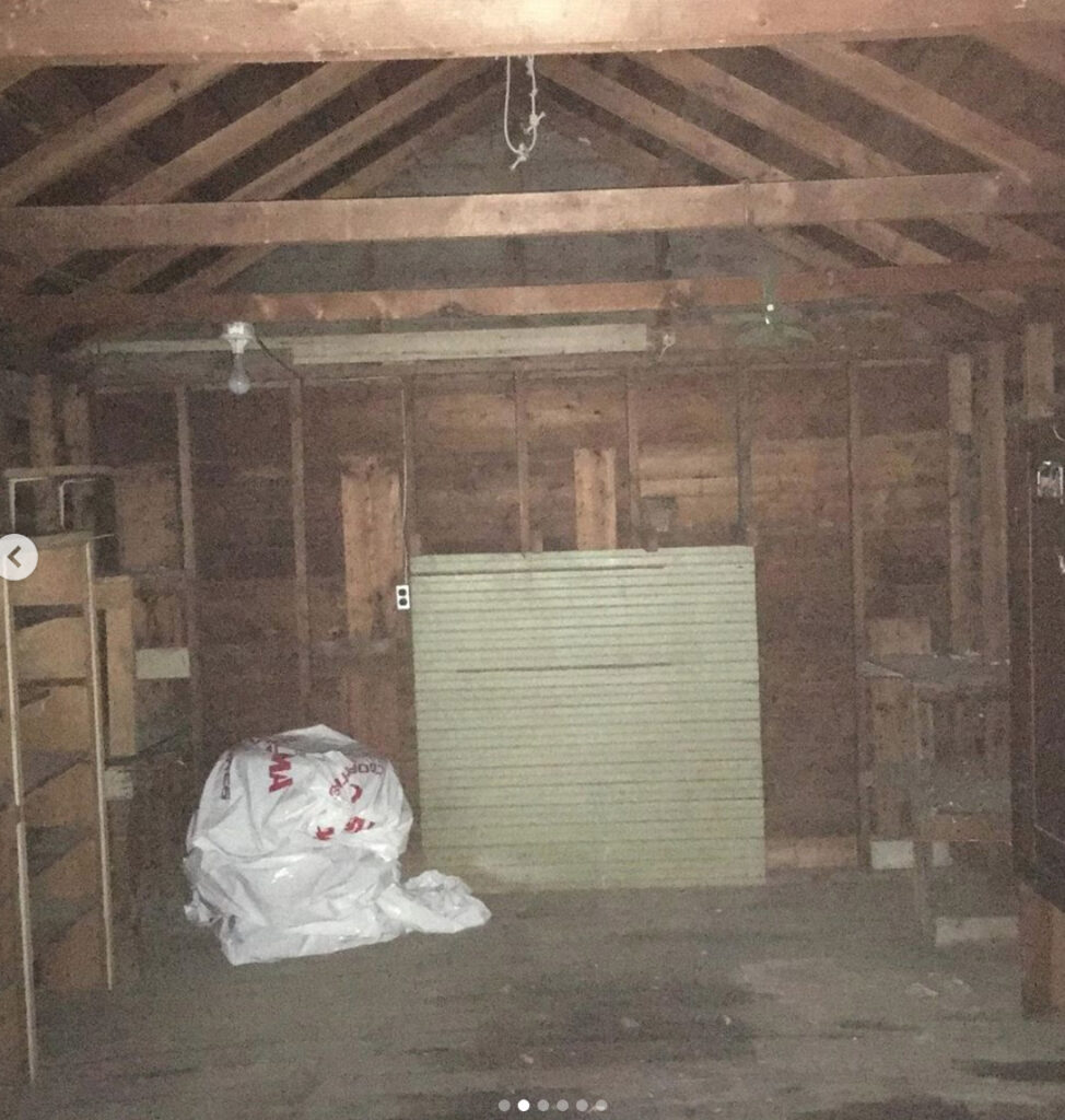 BEFORE: INTERIOR OF SHED