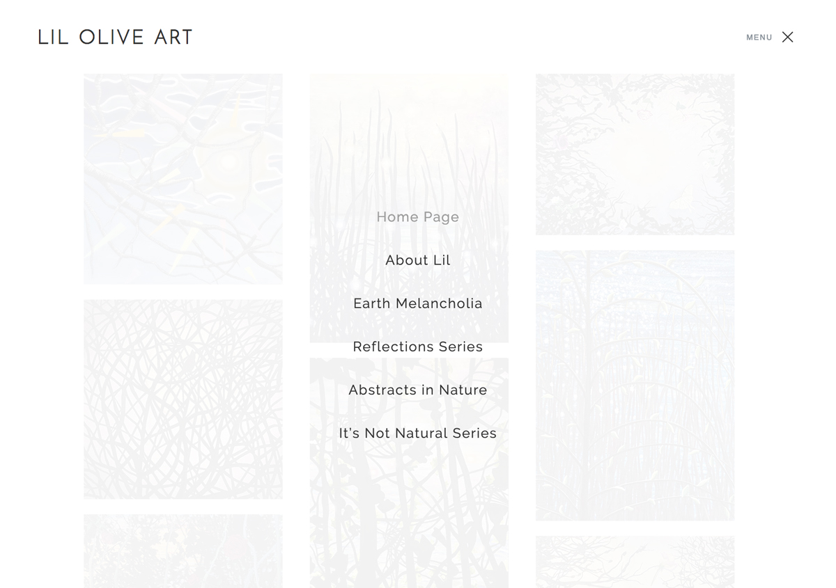 Portfolio Website Design For Artist Lil Olive