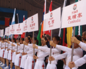 International Wushu Competition