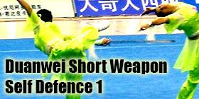 Wushu Grading Form - Duanwei Short Weapon Self Defense 1