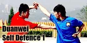 Self Defence 1