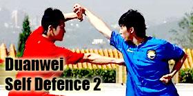 Wushu Grading Form - Duanwei Self Defense 2