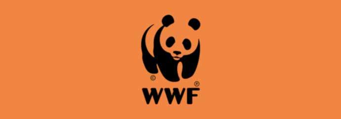 EWC_WWF_Logo bright orange background