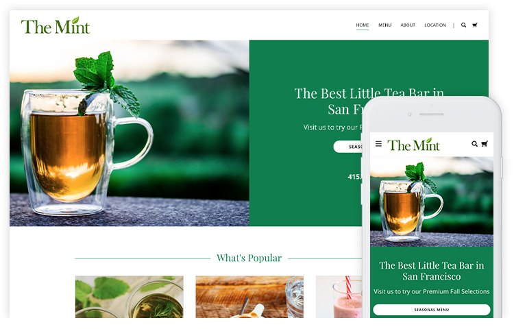 overservhost website builder the mint
