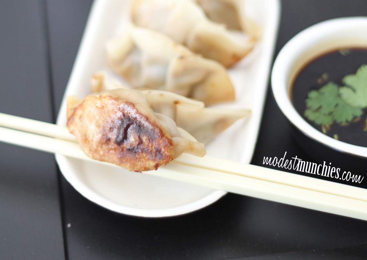 potsticker dumplings (Large)