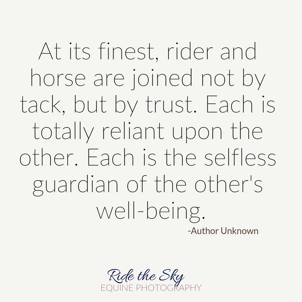 Rider and Horse Quote
