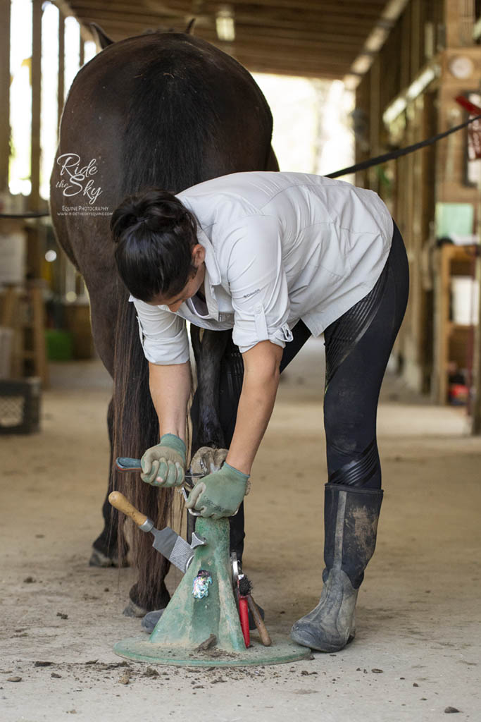 Heavenly Hooves Barefoot Trimmer at work giving horse hoof a trim photographed by Ride the Sky Equine Photography in Ooltewah, Tennessee
