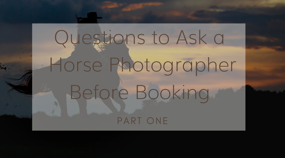 Questions to Ask A Horse Photographer Before Booking, Part 1