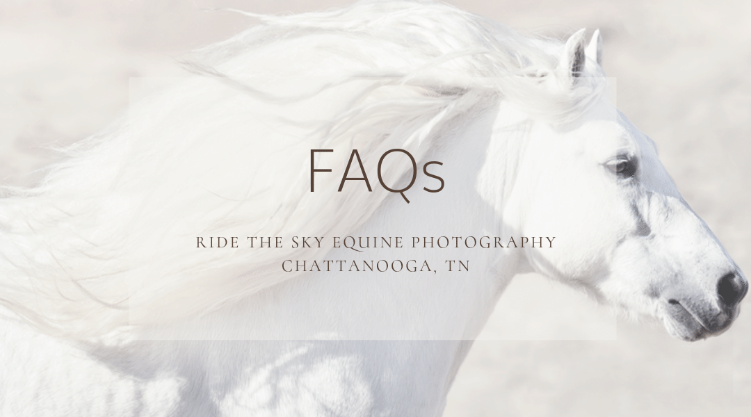 Chattanooga Horse Photography: FAQs