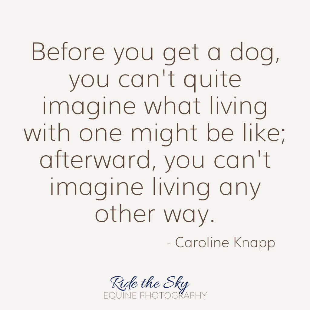 Caroline Knapp Dog quote
