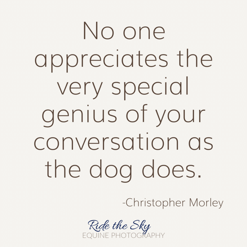 Christopher Morley Canine Quote