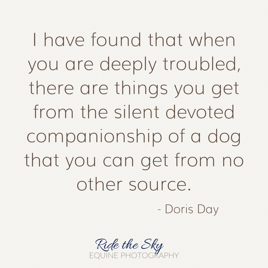 Doris Day Dog Quote