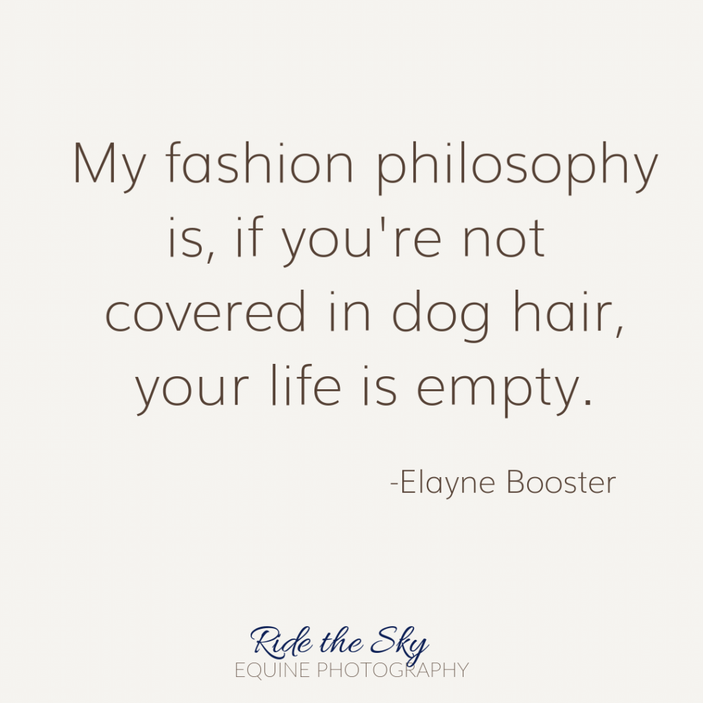 Elayne Booster Dog Quote