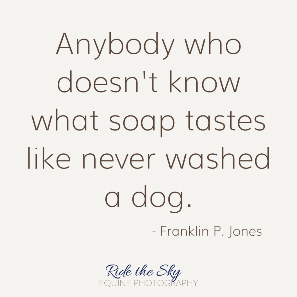 Franklin Jones Dog Quote