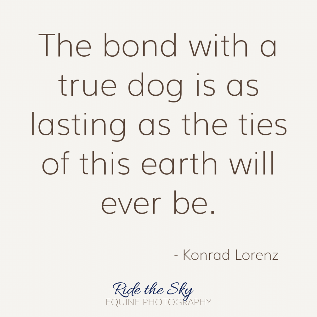 Konrad Lorenz Dog Quote