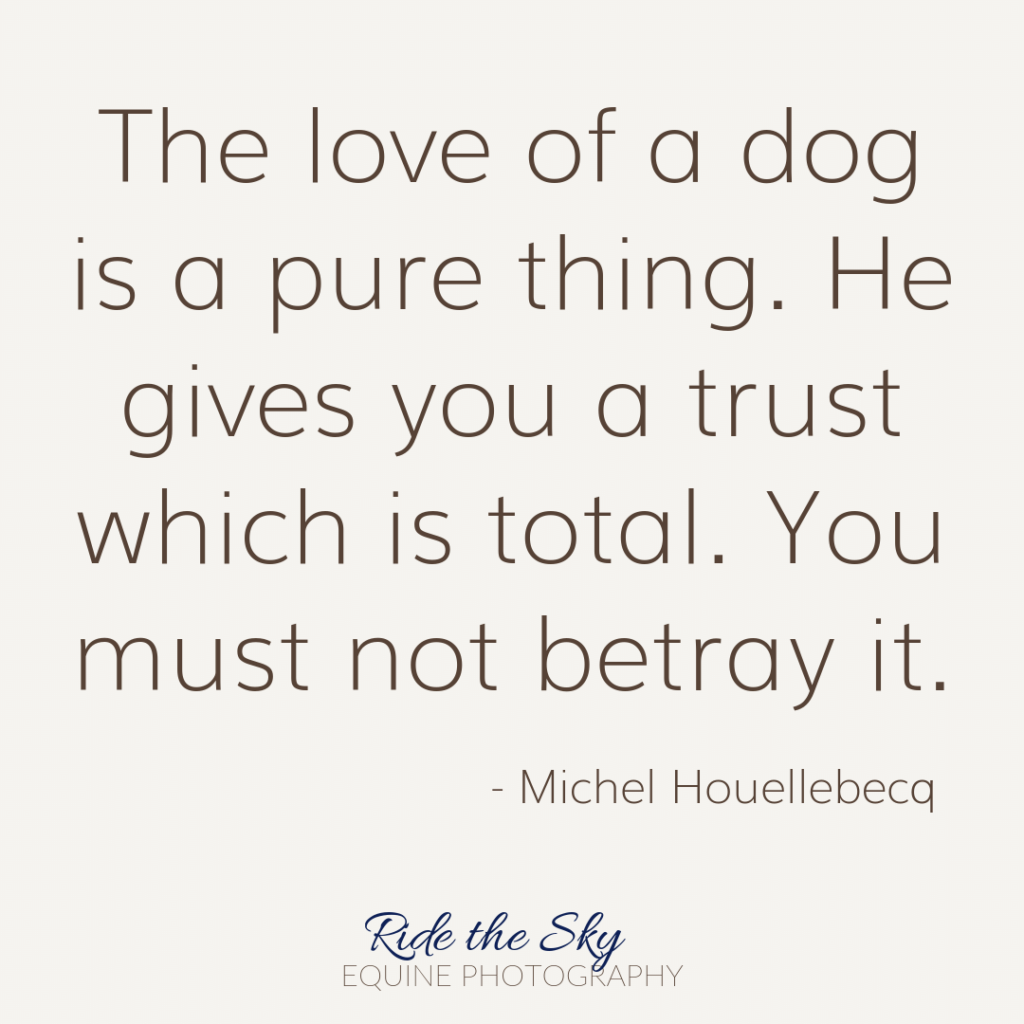 Michel Houellebecq Dog Quote