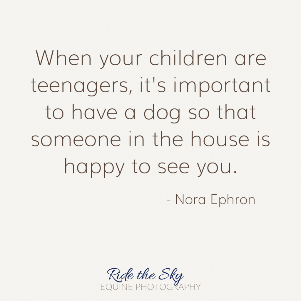Nora Ephron Dog Quote