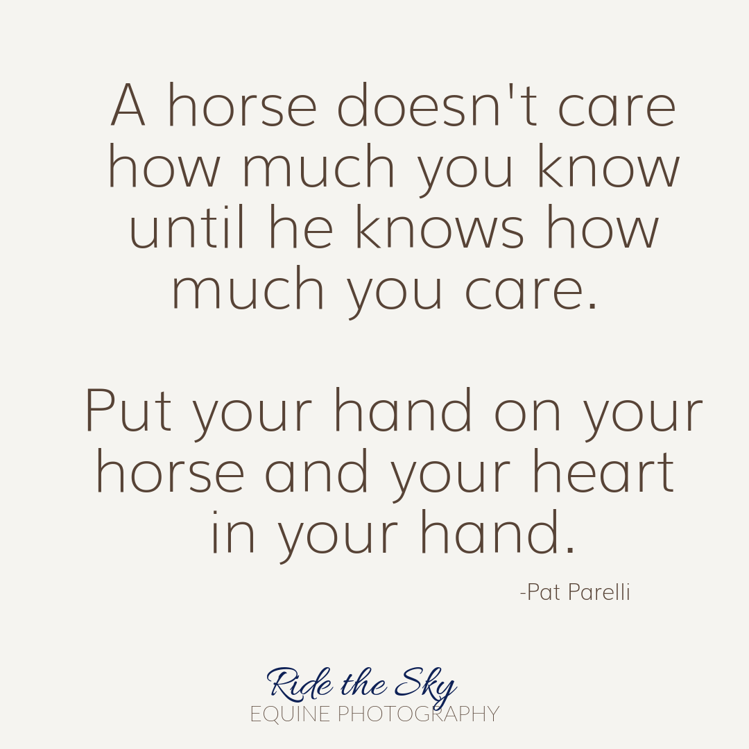 Pat Parelli Horse Quote
