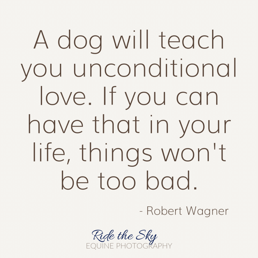 Robert Wagner Dog Quote