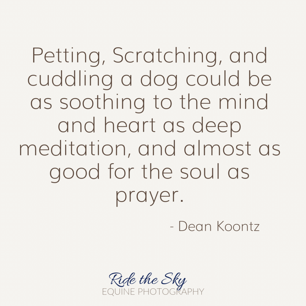 Dean Koontz Dog Quote
