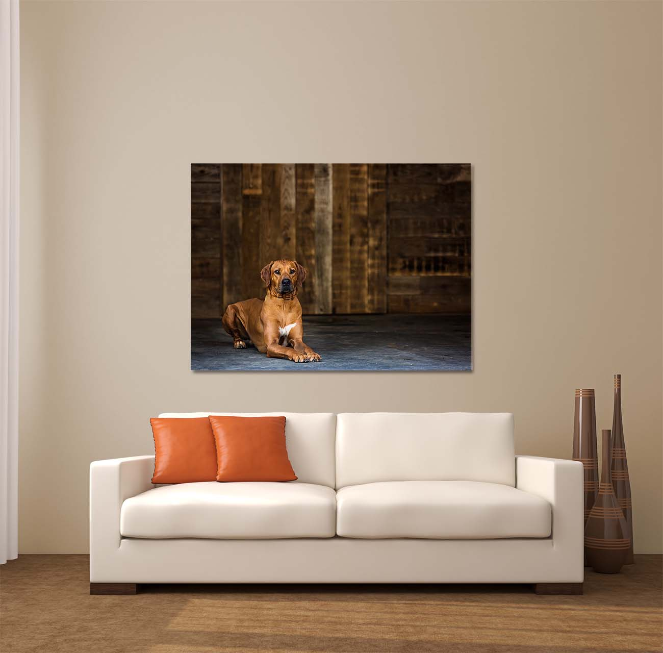 Framed Print of Rhodesian Ridgeback Dog over Couch