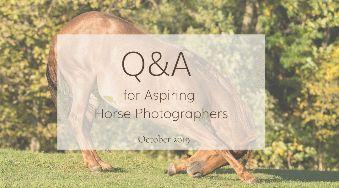Horse Photography: October Q&A