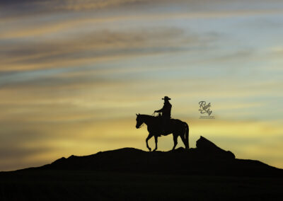 Cowboy-Ridge-Silhouette-Chattanooga-Tennessee-RidetheSkyEquine