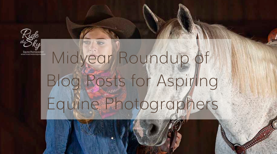 Midyear Roundup of Blog Posts for Aspiring Equine Photographers