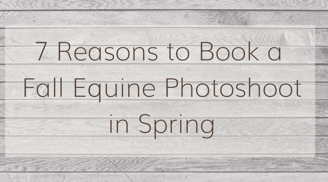 7 Reasons to Book a Fall Equine Photoshoot in Spring
