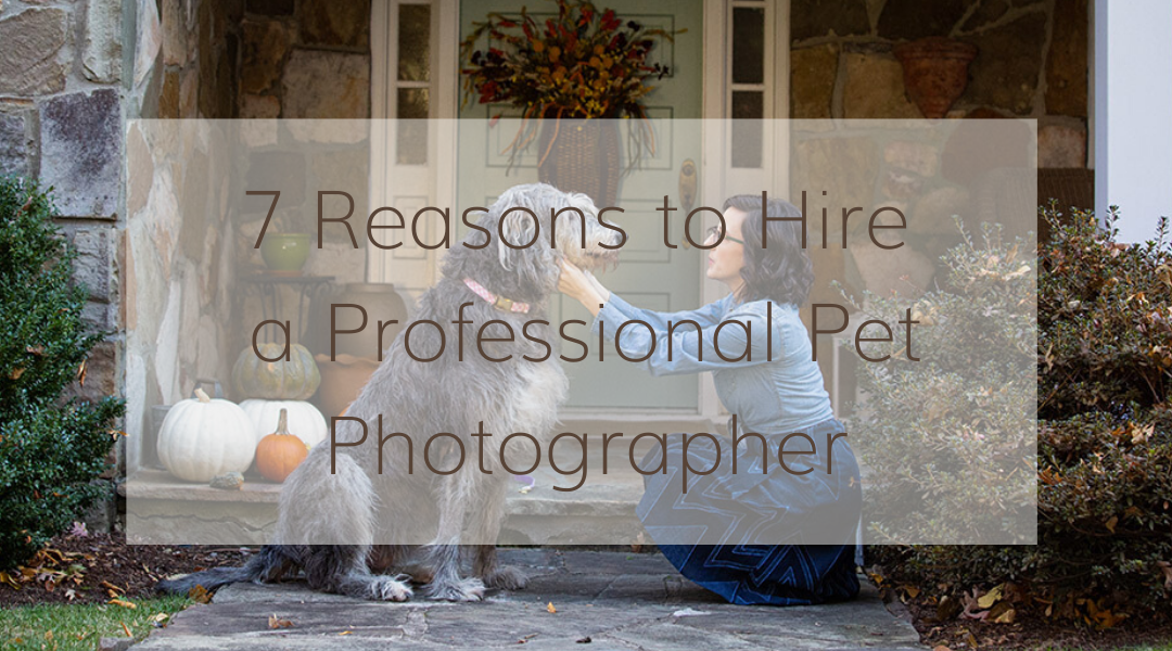 7 Reasons to Hire a Professional Pet Photographer