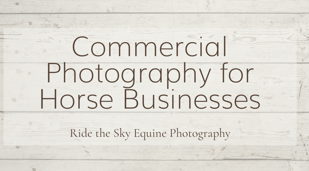 Commercial Photography for Horse Businesses