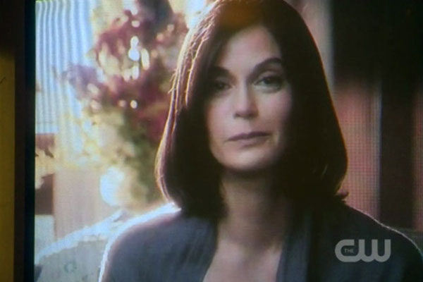 Smallville - Teri Hatcher (รับบทเป็น Ella Lane แม่ของ Lois Lane ใน Season 10 EP. 8)