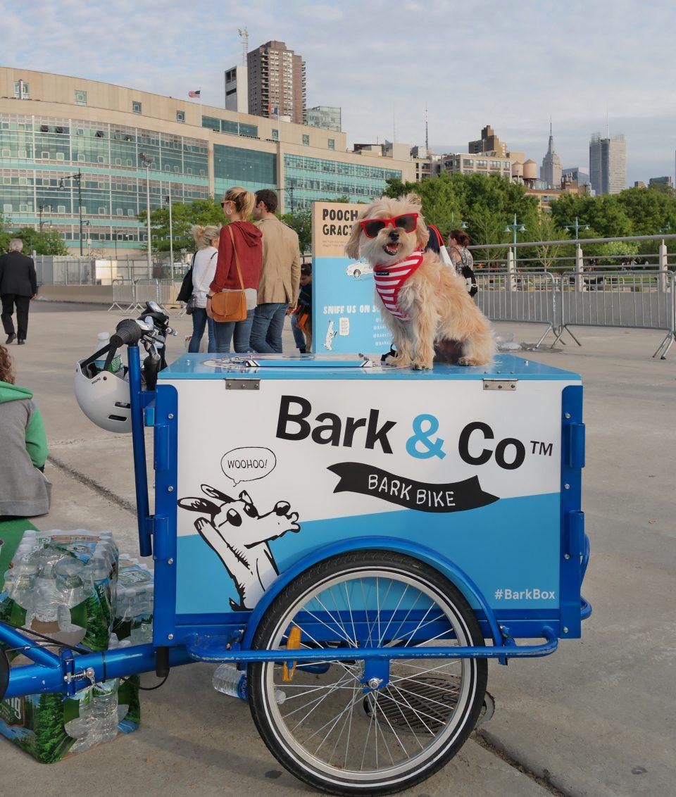 barkfest-nyc-3
