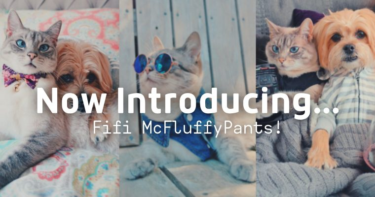 Introducing Fifi McFluffyPants!