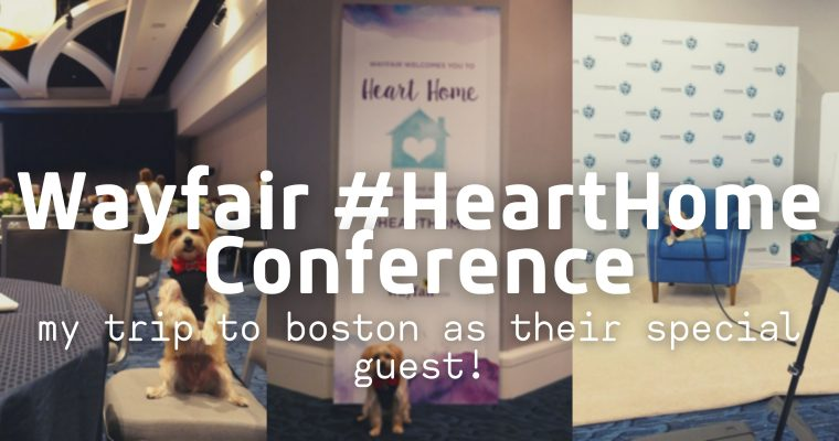 Rambo's Trip to the Wayfair Heart Home Conference