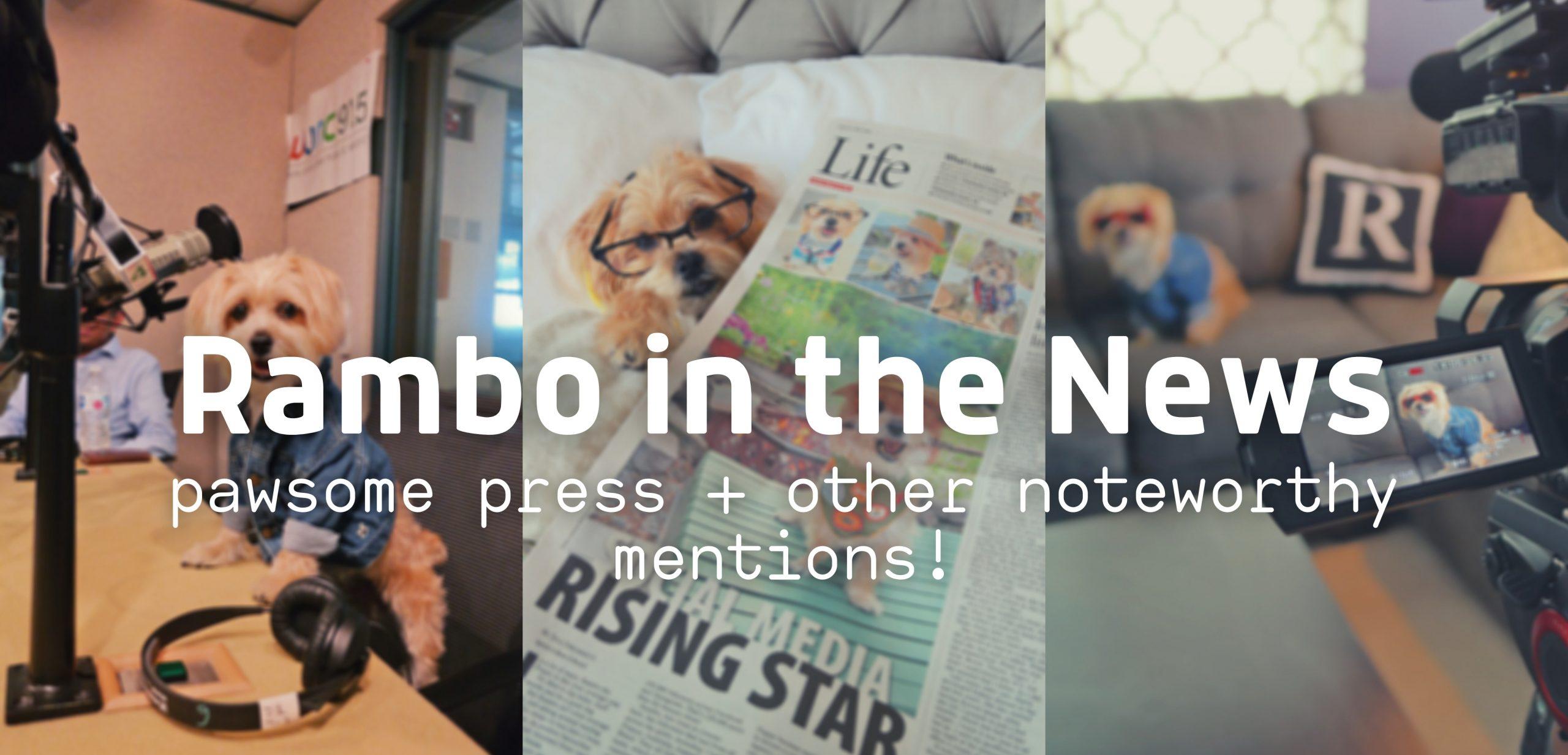 Rambo in the News