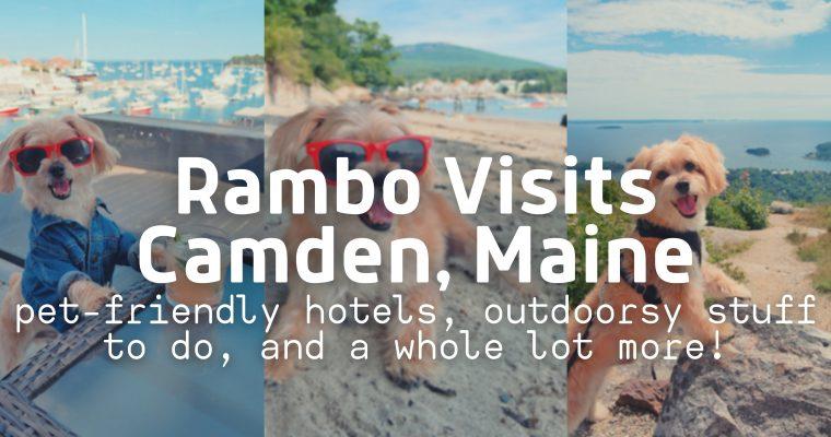 Rambo's Pet-Friendly Trip to Camden, Maine