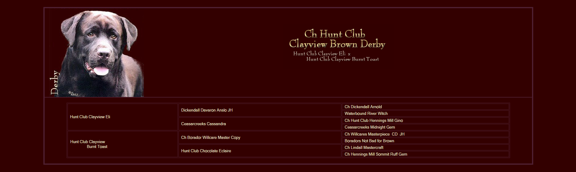 huntclublabsDerby