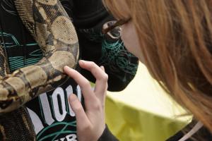 snake skin touch