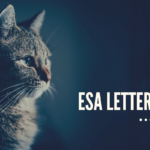 Get Emotional Support Animal Letters for dogs, cats, and more- Greensboro, NC
