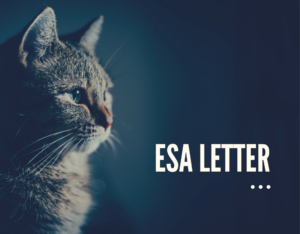 Read more about the article ESA Letter