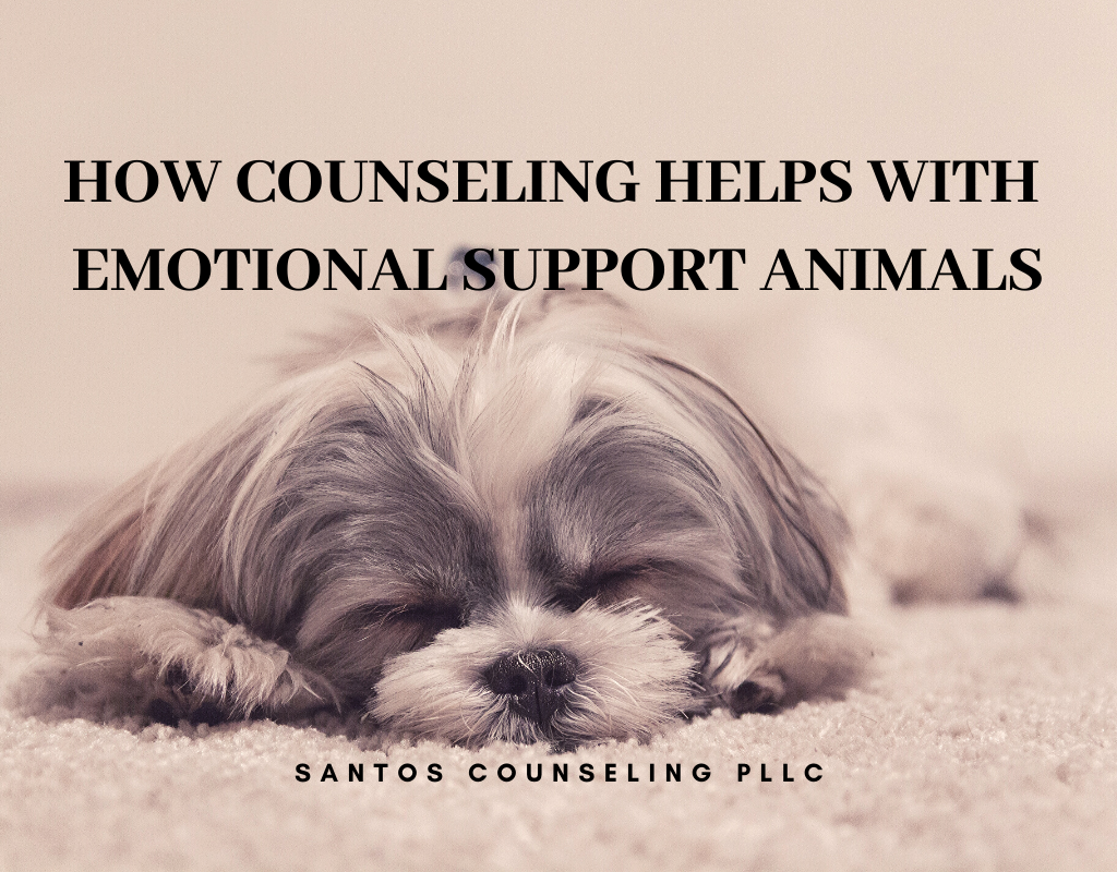Read more about the article How Counseling Can Help With Emotional Support Animal