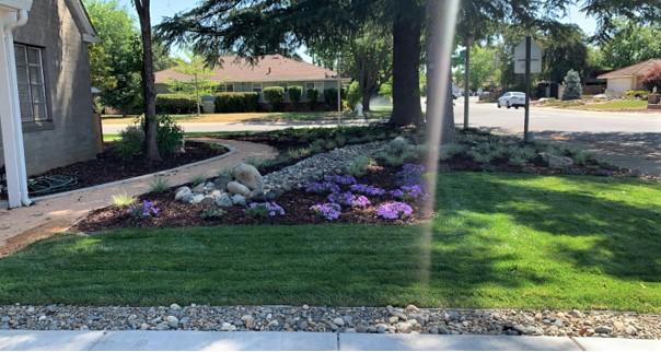 3D Landscape Design Sacramento (2)