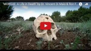 morgue film