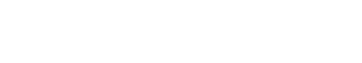 Docksnlocks-header-logo