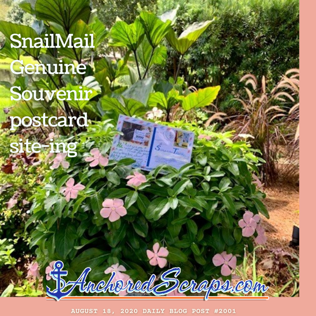Sharing a postcard site-ing from yesterday of SnailMail Genuine Souvenir