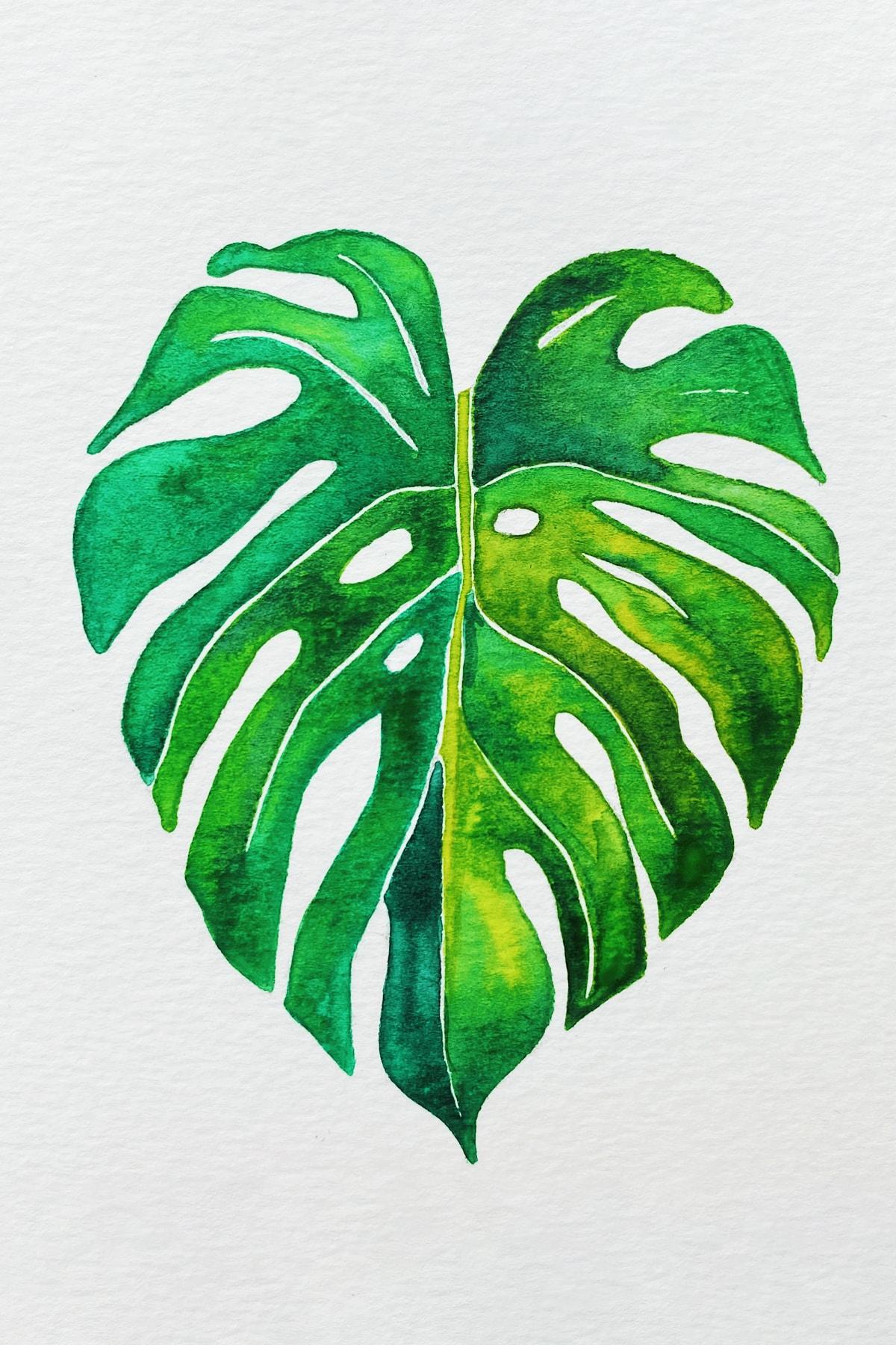 palm leaf 2-min