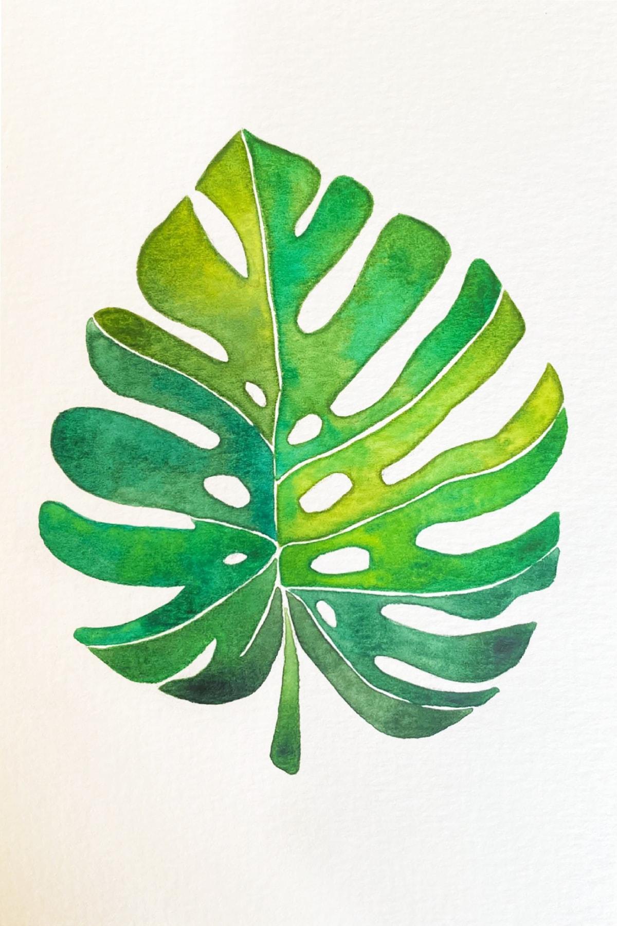 palm leaf-min