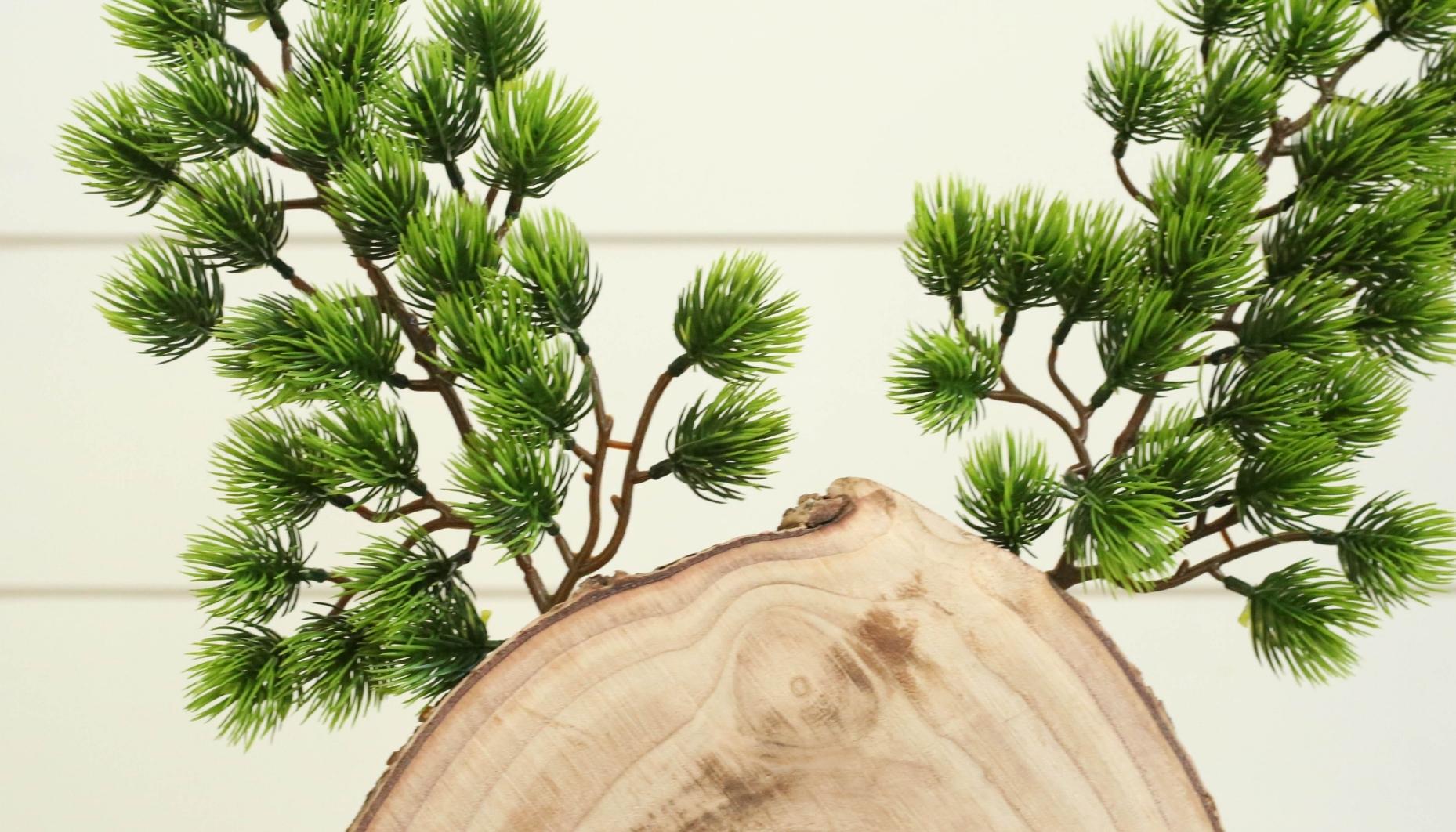 attach pine antlers